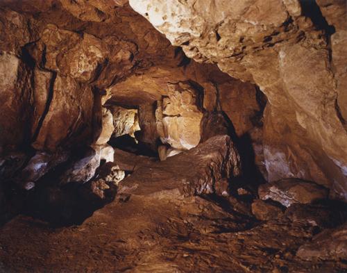 アルタミラ洞窟の画像 p1_24