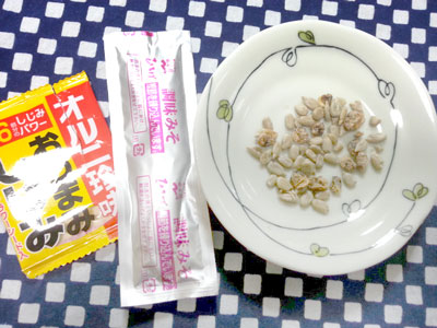 シジミと味噌